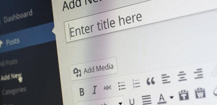 O início da Vida de Blogueira