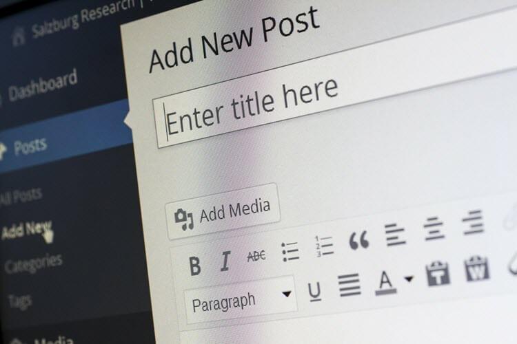 O início da Vida de Blogueira - WordPress